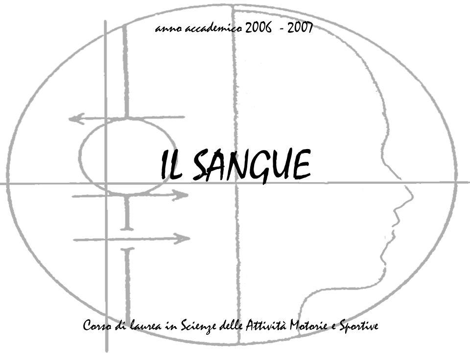 IL SANGUE anno accademico 2006 - 2007