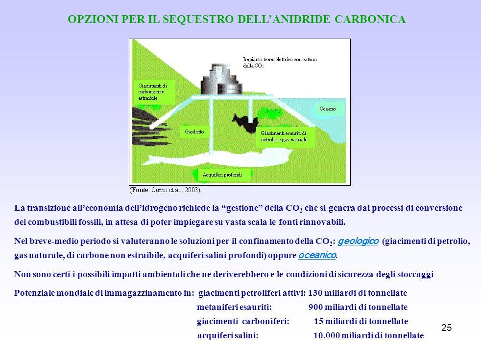 OPZIONI PER IL SEQUESTRO DELL'ANIDRIDE CARBONICA