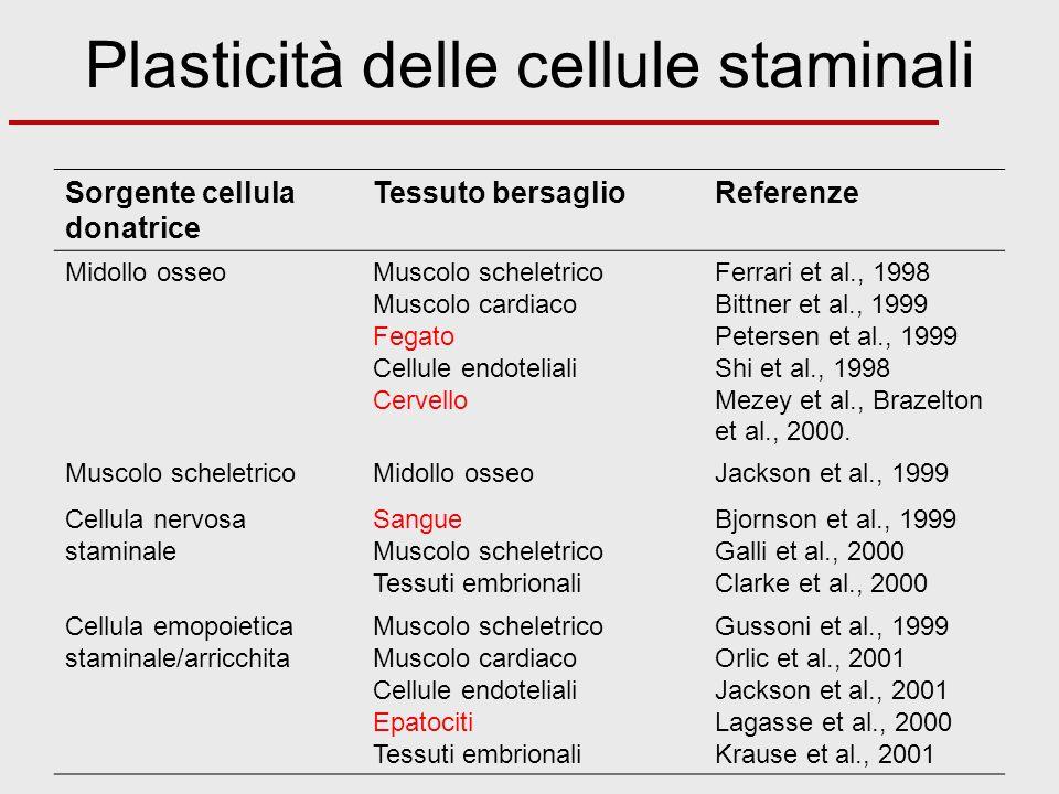 Plasticità delle cellule staminali