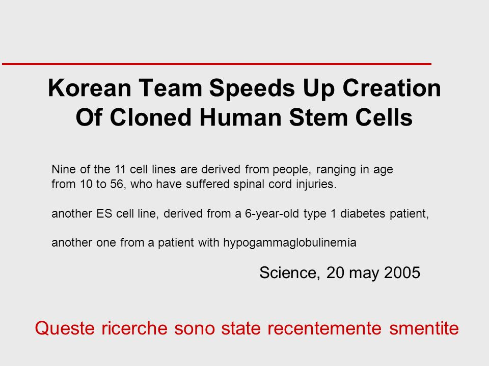 Korean Team Speeds Up Creation Of Cloned Human Stem Cells