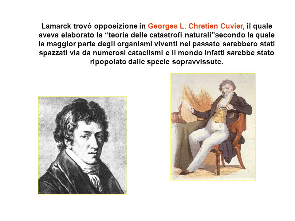 Lamarck trovò opposizione in Georges L