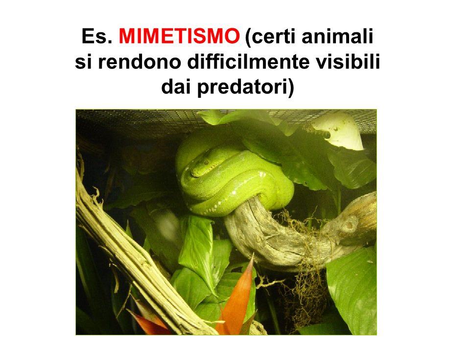 Es. MIMETISMO (certi animali si rendono difficilmente visibili dai predatori)