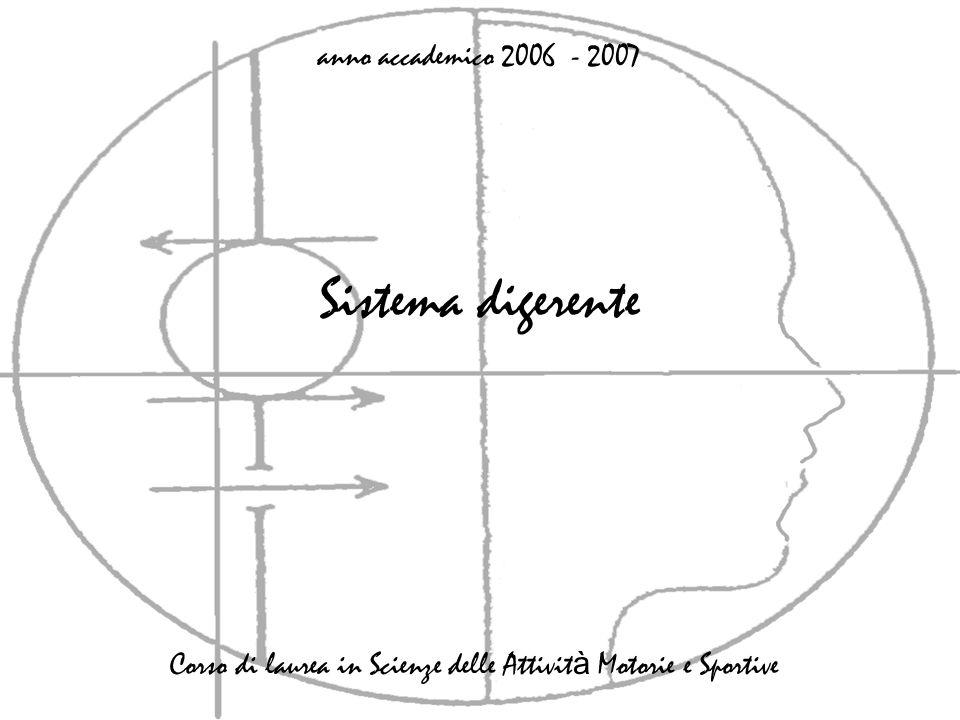 Sistema digerente anno accademico 2006 - 2007