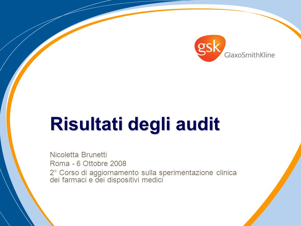 Risultati degli audit Nicoletta Brunetti Roma - 6 Ottobre 2008