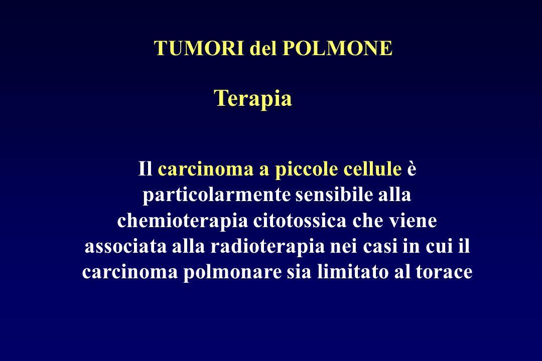 Terapia TUMORI del POLMONE