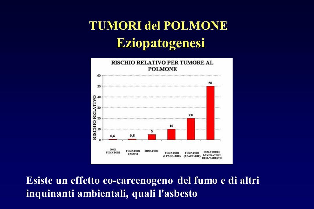 Eziopatogenesi TUMORI del POLMONE