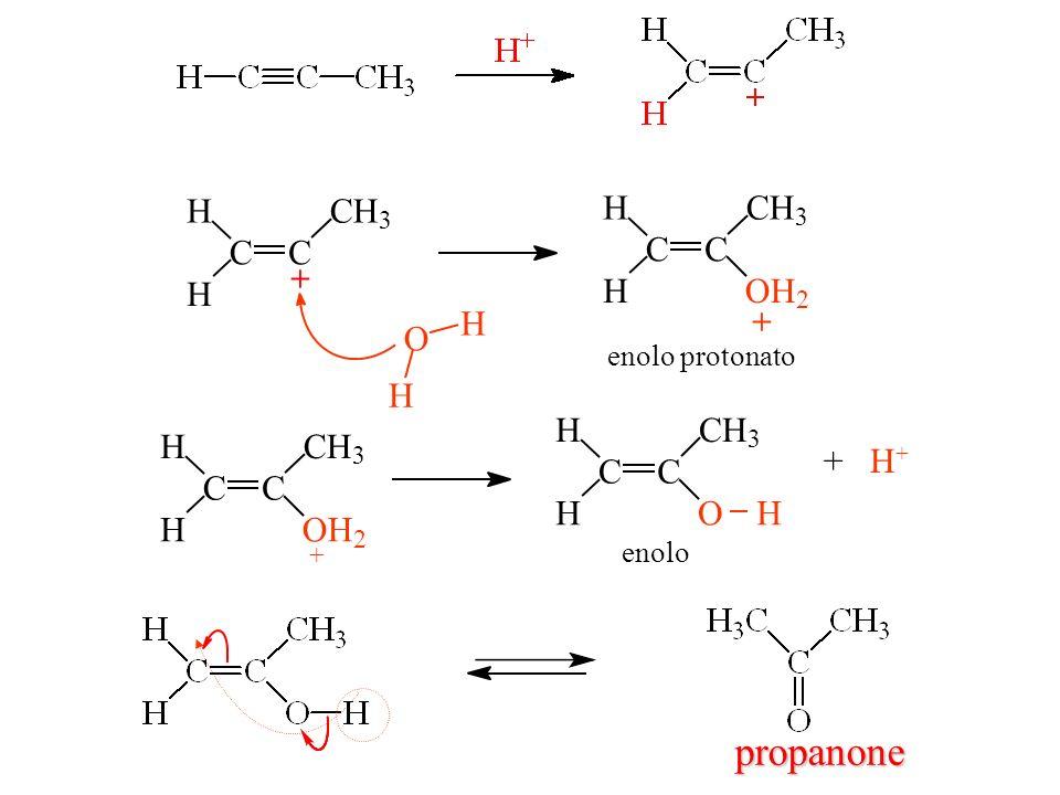 C H 3 + O 2 enolo protonato + C H 3 O 2 + H+ enolo propanone