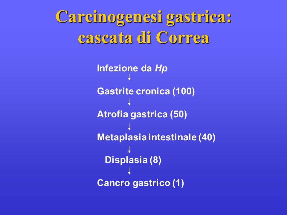 Carcinogenesi gastrica: cascata di Correa