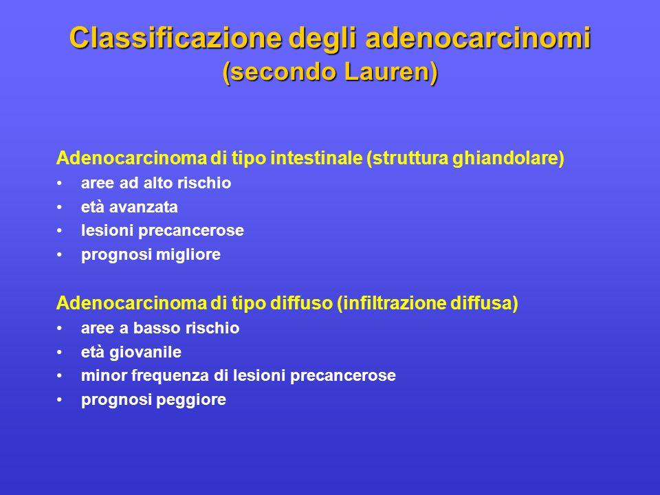 Classificazione degli adenocarcinomi (secondo Lauren)