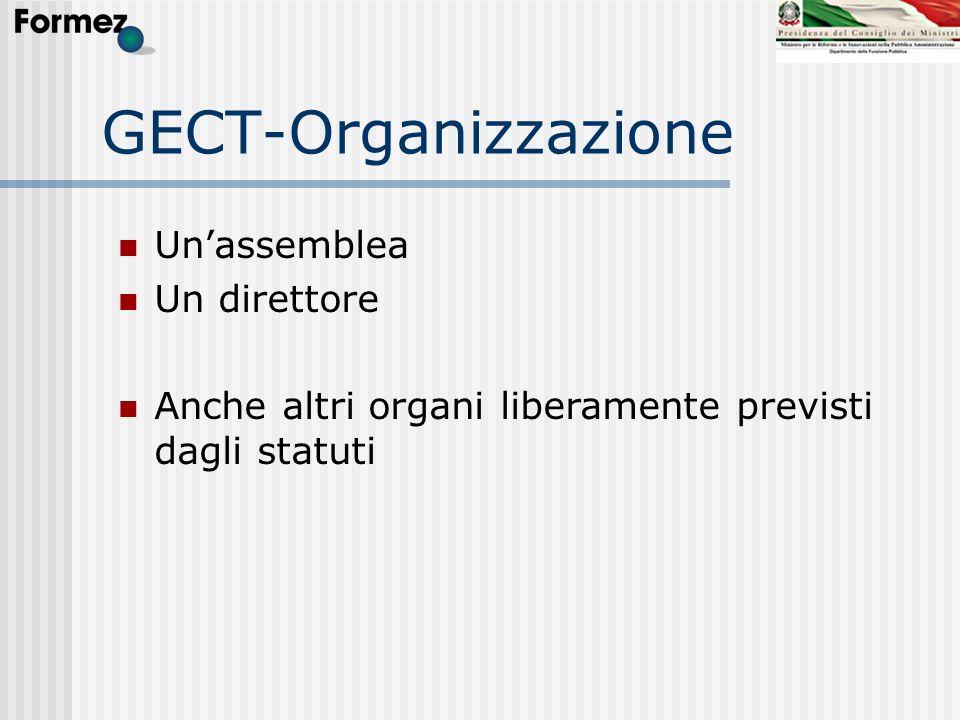 GECT-Organizzazione Un'assemblea Un direttore