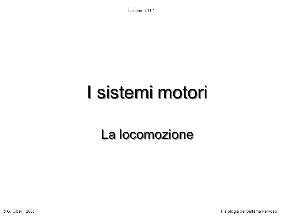 I sistemi motori La locomozione © G. Cibelli, 2006
