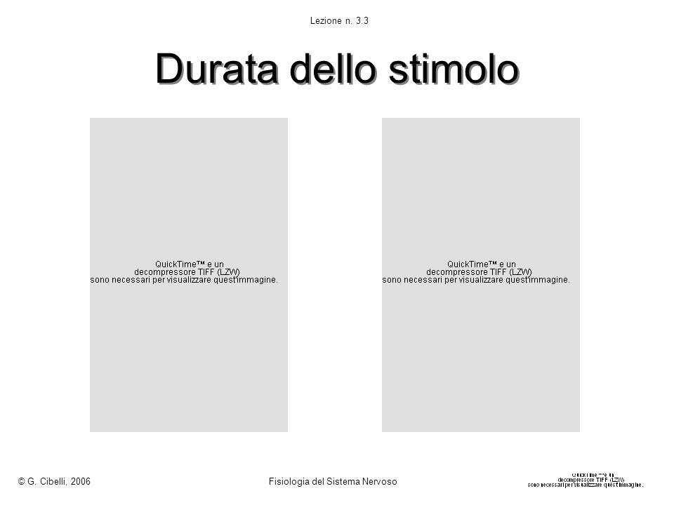 Durata dello stimolo © G. Cibelli, 2006 Fisiologia del Sistema Nervoso