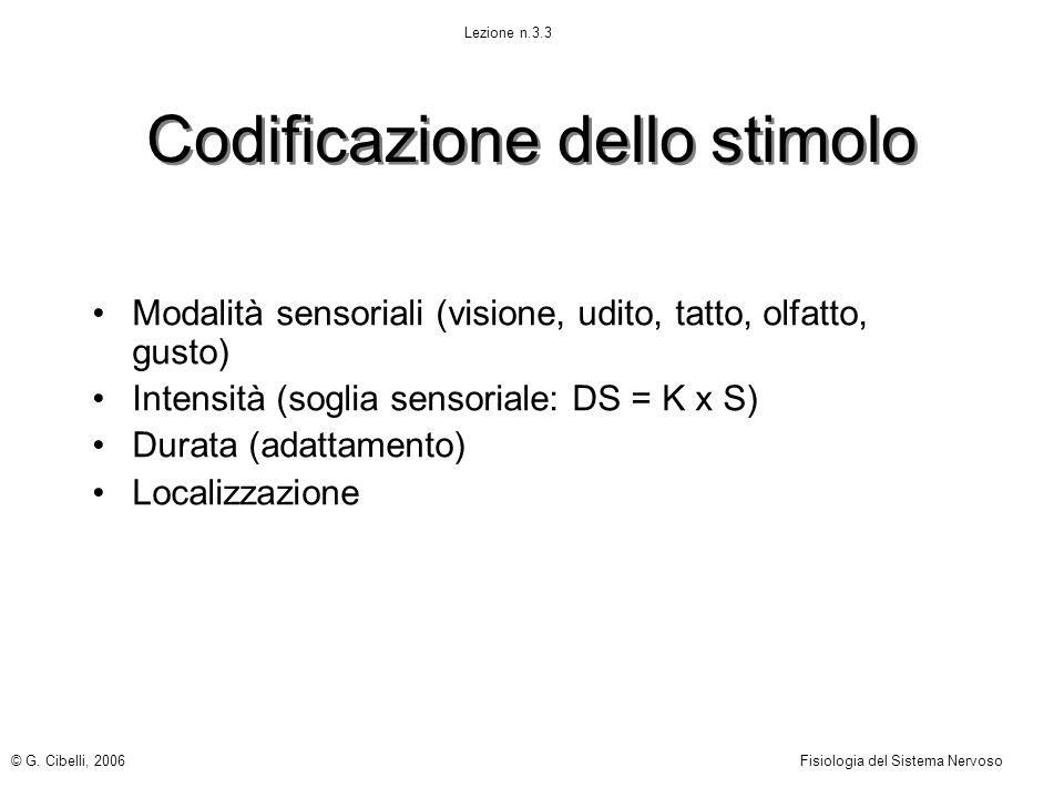 Codificazione dello stimolo