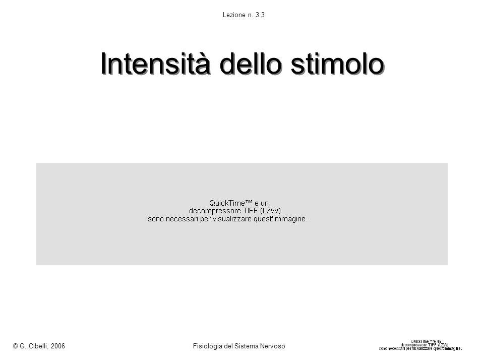 Intensità dello stimolo