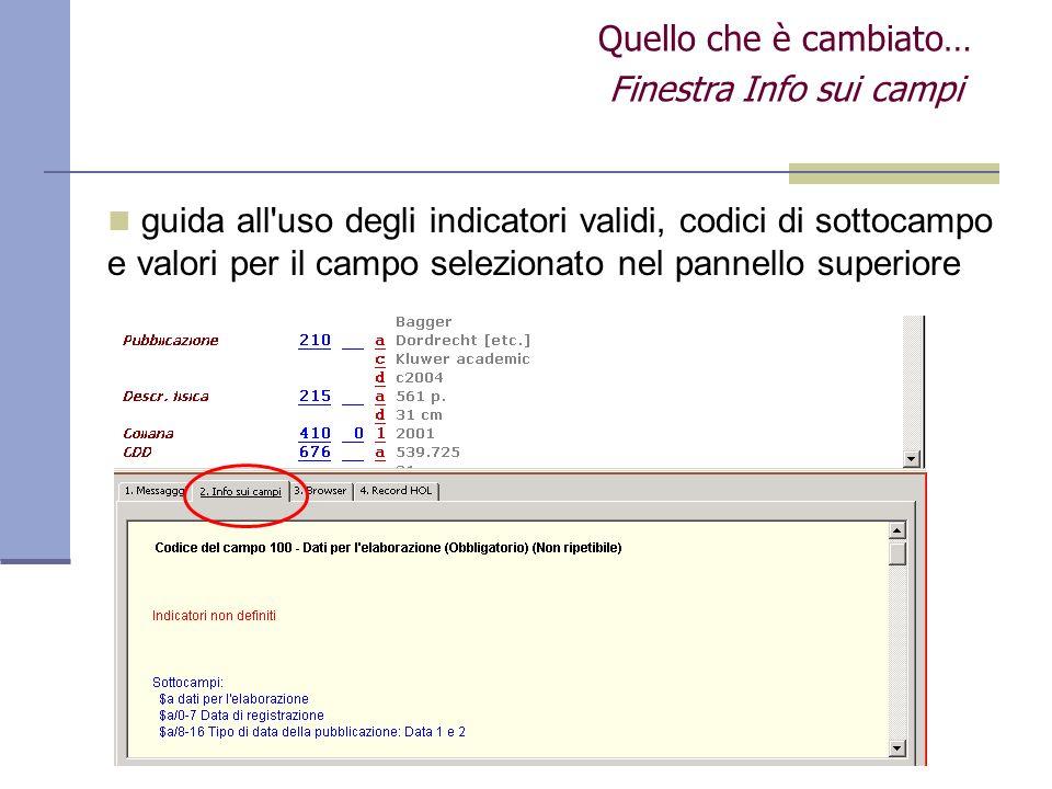 Finestra Info sui campi