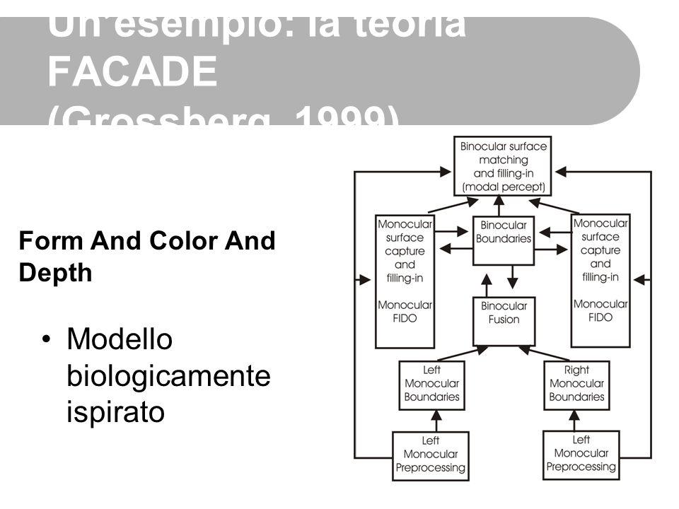 Un'esempio: la teoria FACADE (Grossberg, 1999)