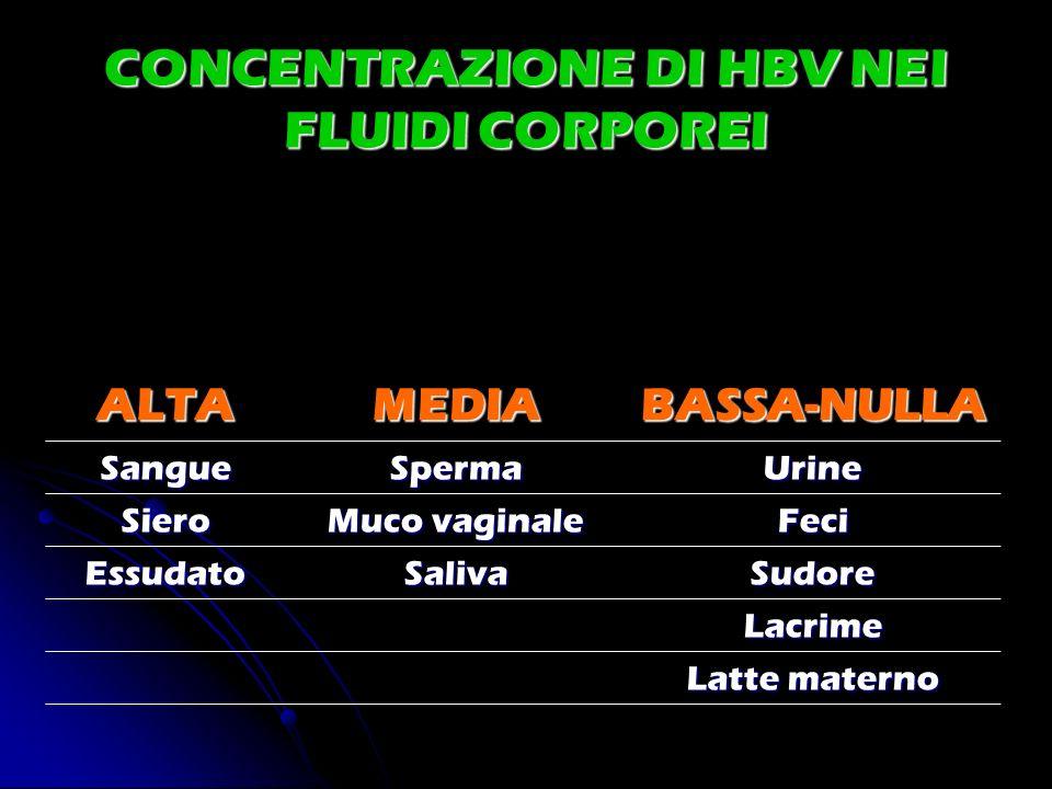 CONCENTRAZIONE DI HBV NEI FLUIDI CORPOREI