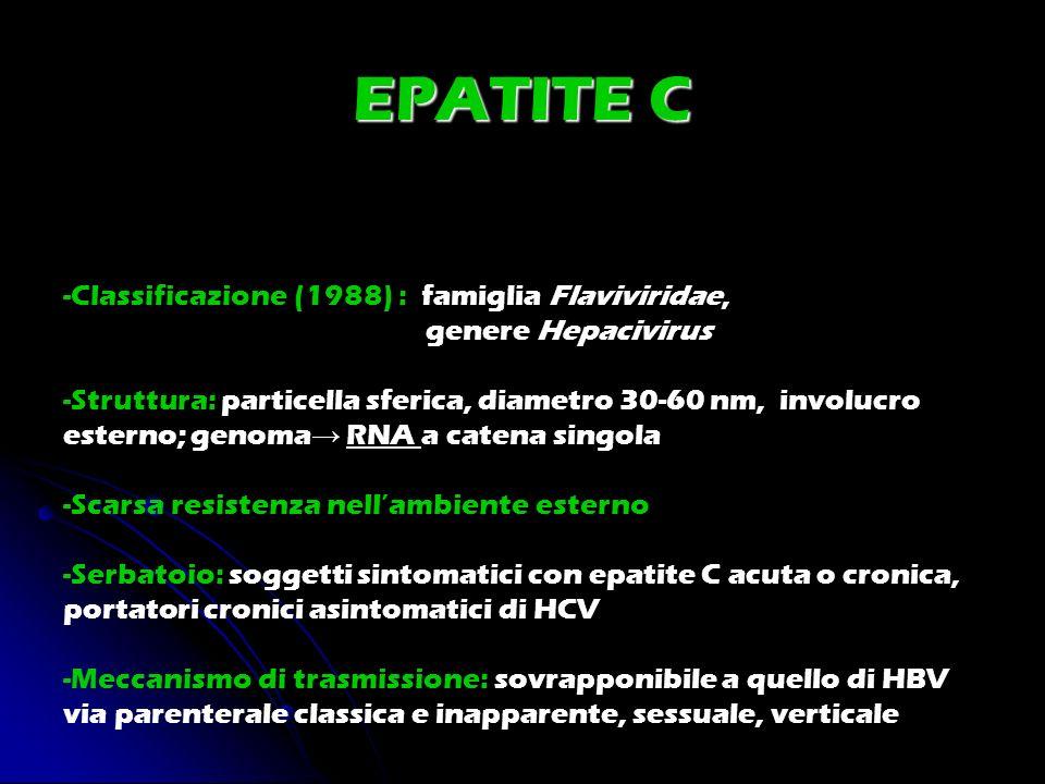EPATITE C -Classificazione (1988) : famiglia Flaviviridae,