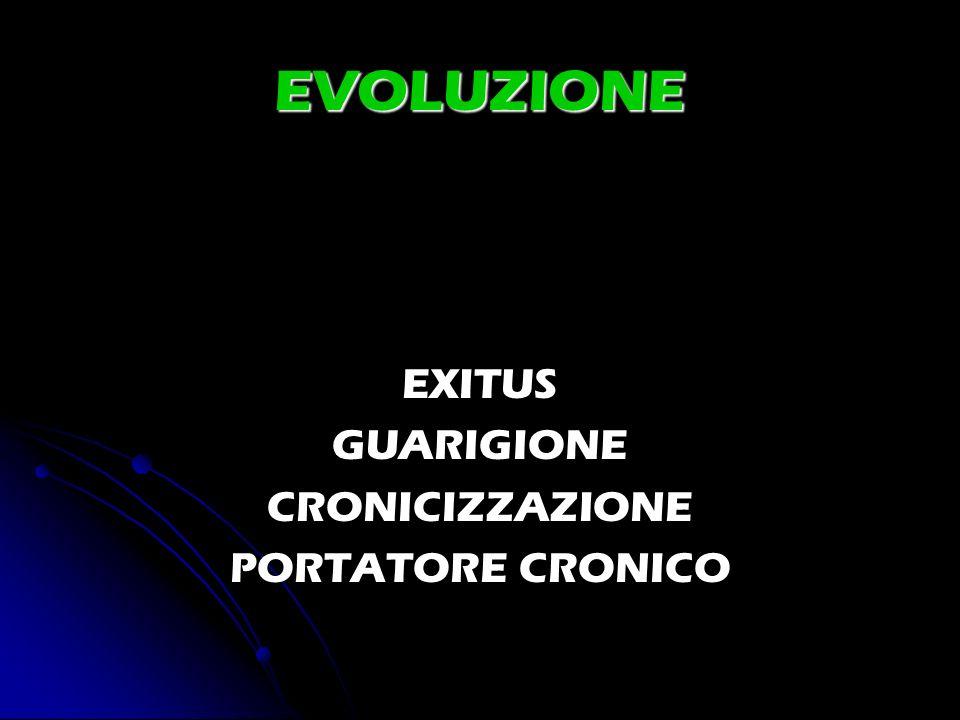EVOLUZIONE EXITUS GUARIGIONE CRONICIZZAZIONE PORTATORE CRONICO