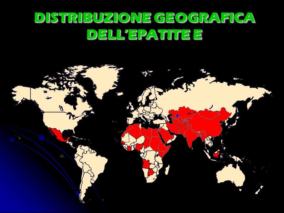 DISTRIBUZIONE GEOGRAFICA DELL'EPATITE E