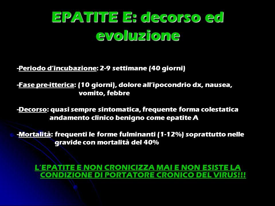EPATITE E: decorso ed evoluzione
