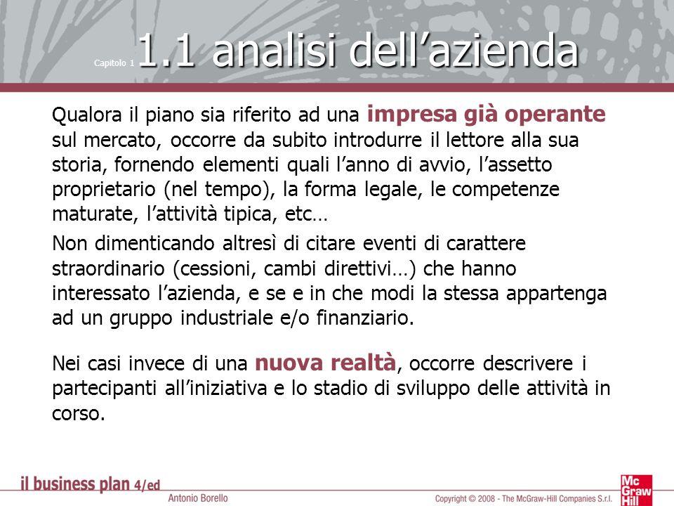 Capitolo 11.1 analisi dell'azienda