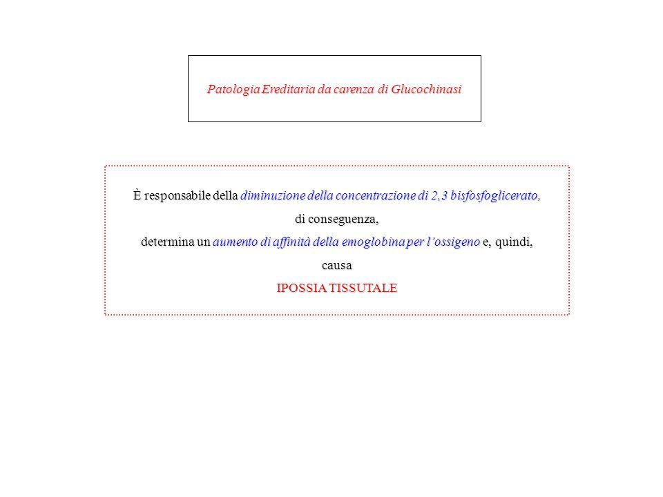 Patologia Ereditaria da carenza di Glucochinasi