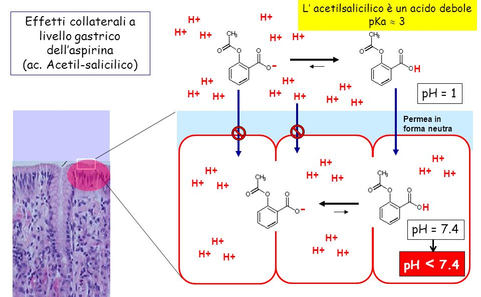 L' acetilsalicilico è un acido debole
