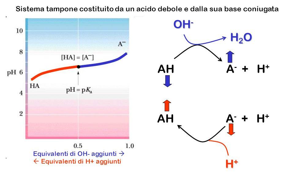 OH- H2O AH A- + H+ AH A- + H+ H+