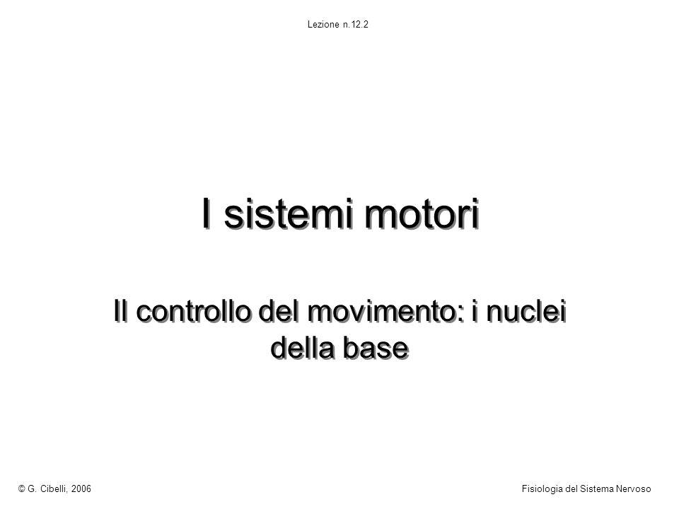 Il controllo del movimento: i nuclei della base