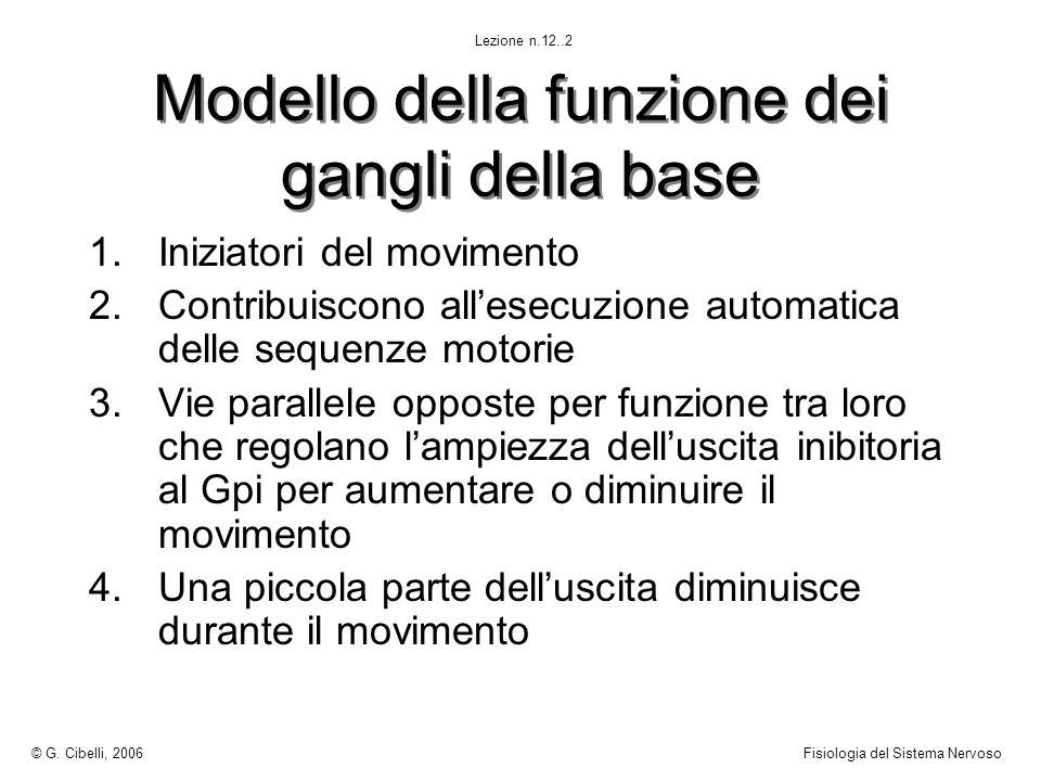 Modello della funzione dei gangli della base