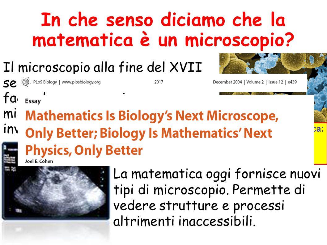 In che senso diciamo che la matematica è un microscopio