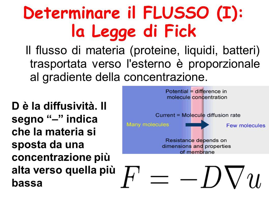 Determinare il FLUSSO (I):