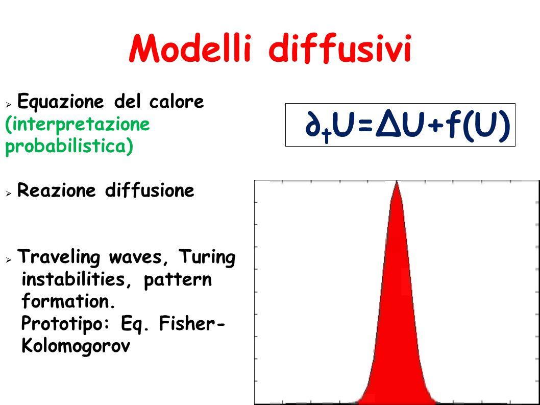 Modelli diffusivi ∂tU=∆U ∂tU=∆U+f(U) Equazione del calore