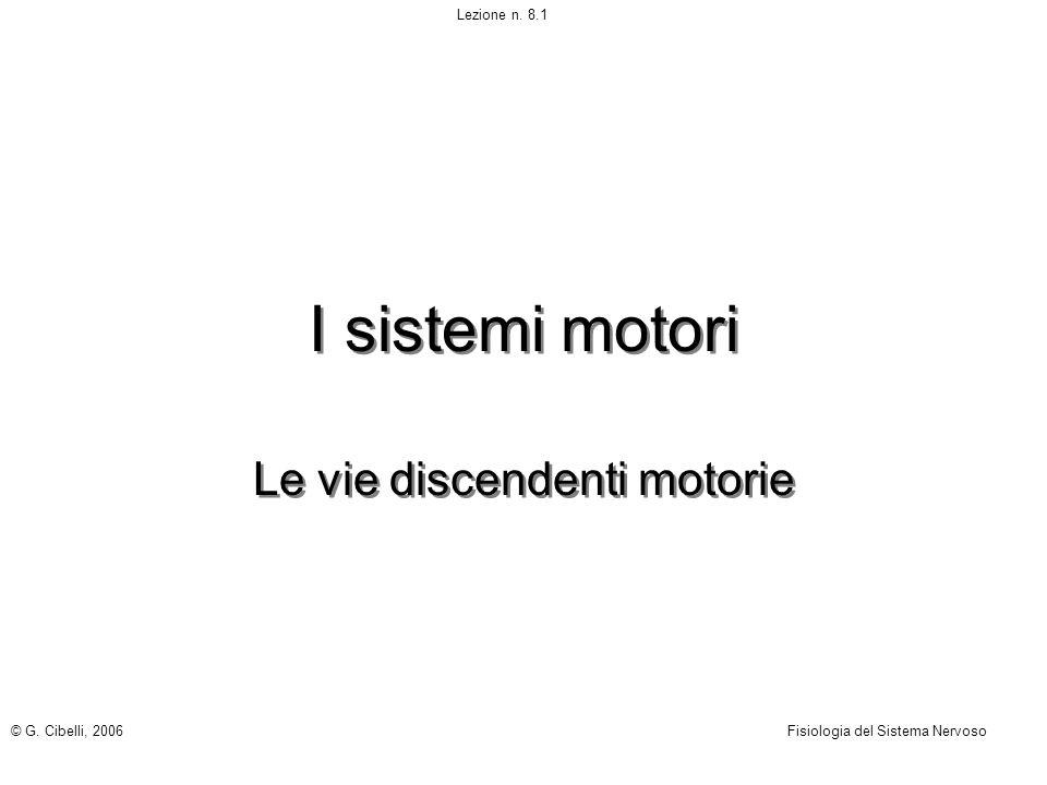 Le vie discendenti motorie