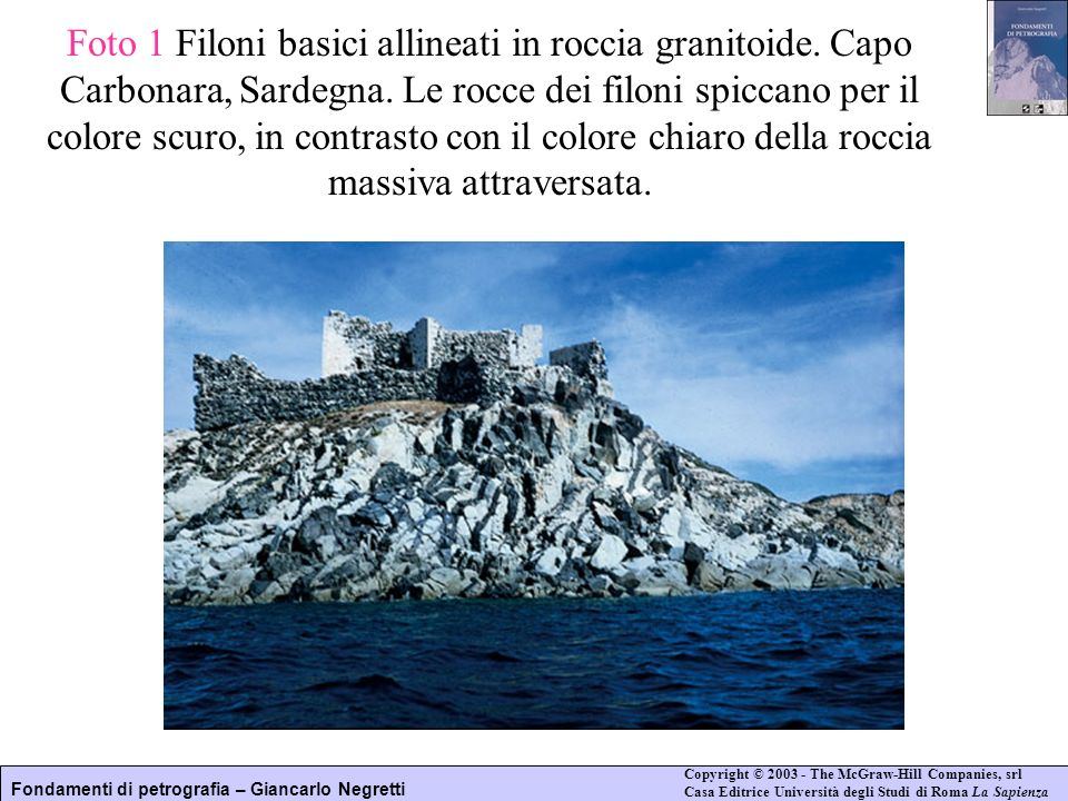 Foto 1 Filoni basici allineati in roccia granitoide