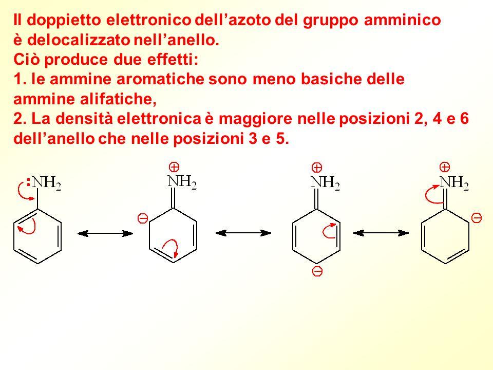 Il doppietto elettronico dell'azoto del gruppo amminico