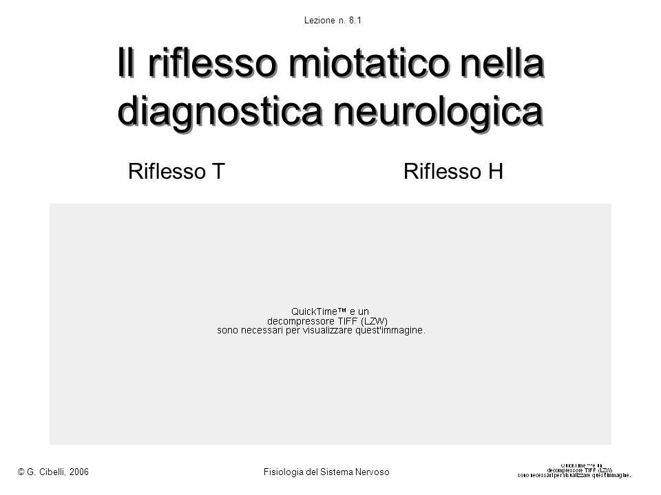Il riflesso miotatico nella diagnostica neurologica