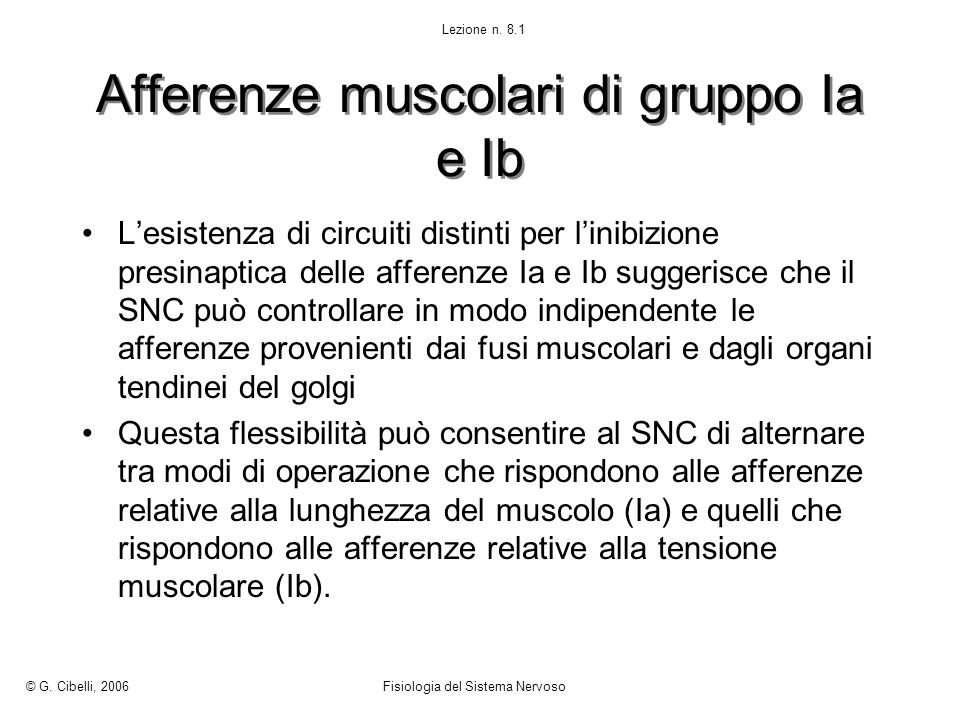 Afferenze muscolari di gruppo Ia e Ib
