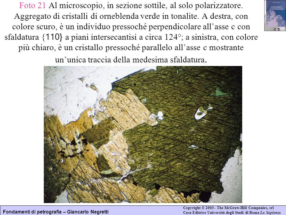 Foto 21 Al microscopio, in sezione sottile, al solo polarizzatore