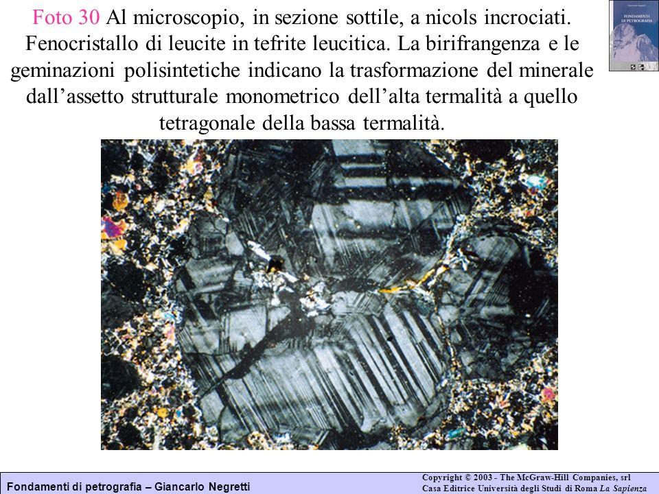 Foto 30 Al microscopio, in sezione sottile, a nicols incrociati
