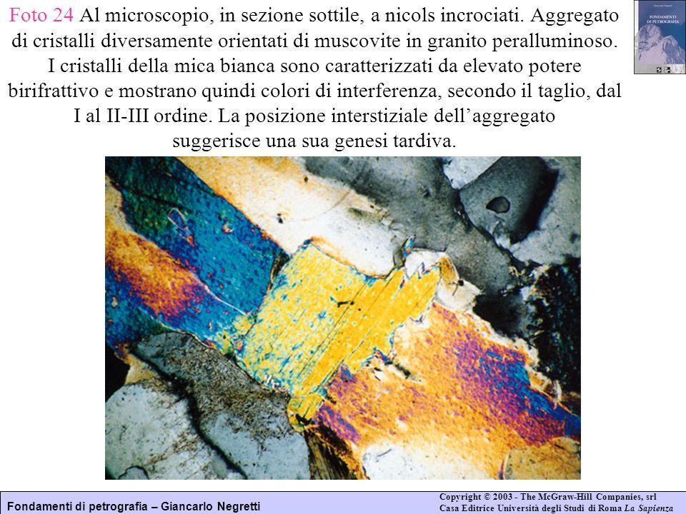 Foto 24 Al microscopio, in sezione sottile, a nicols incrociati