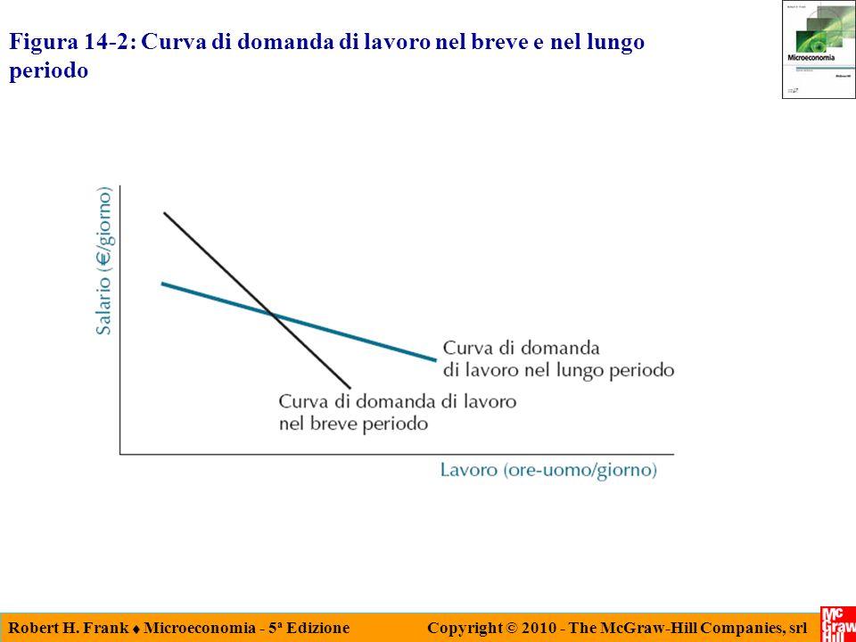 Figura 14-2: Curva di domanda di lavoro nel breve e nel lungo periodo
