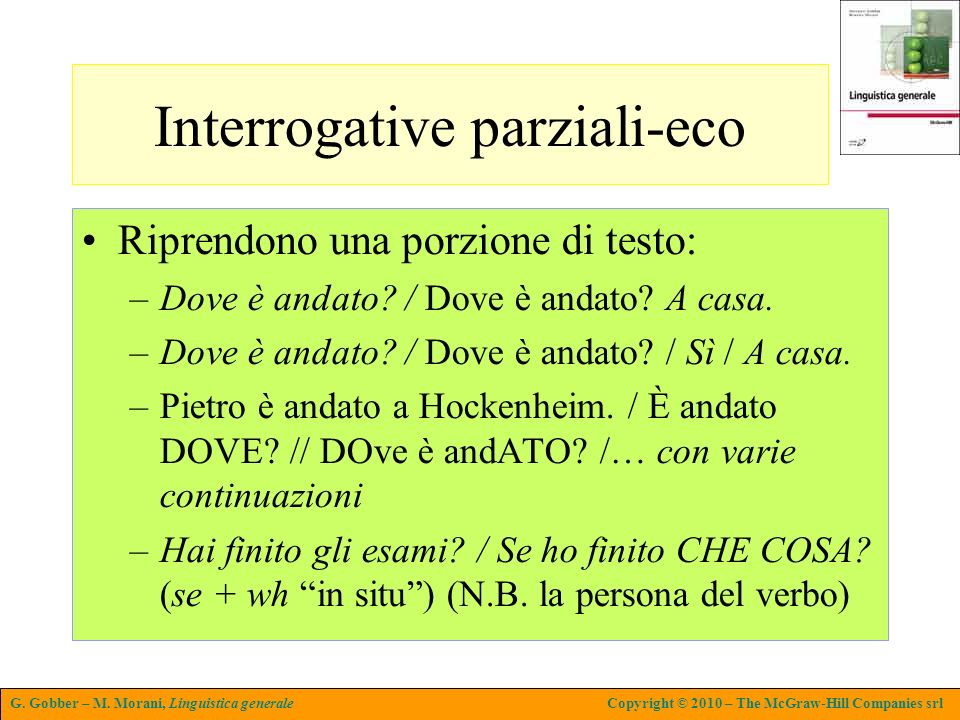 Interrogative parziali-eco