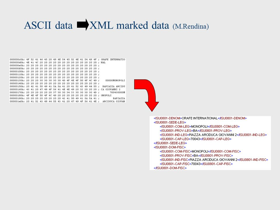 ASCII data XML marked data (M.Rendina)