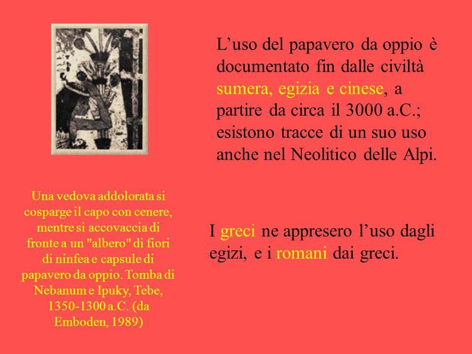 I greci ne appresero l'uso dagli egizi, e i romani dai greci.