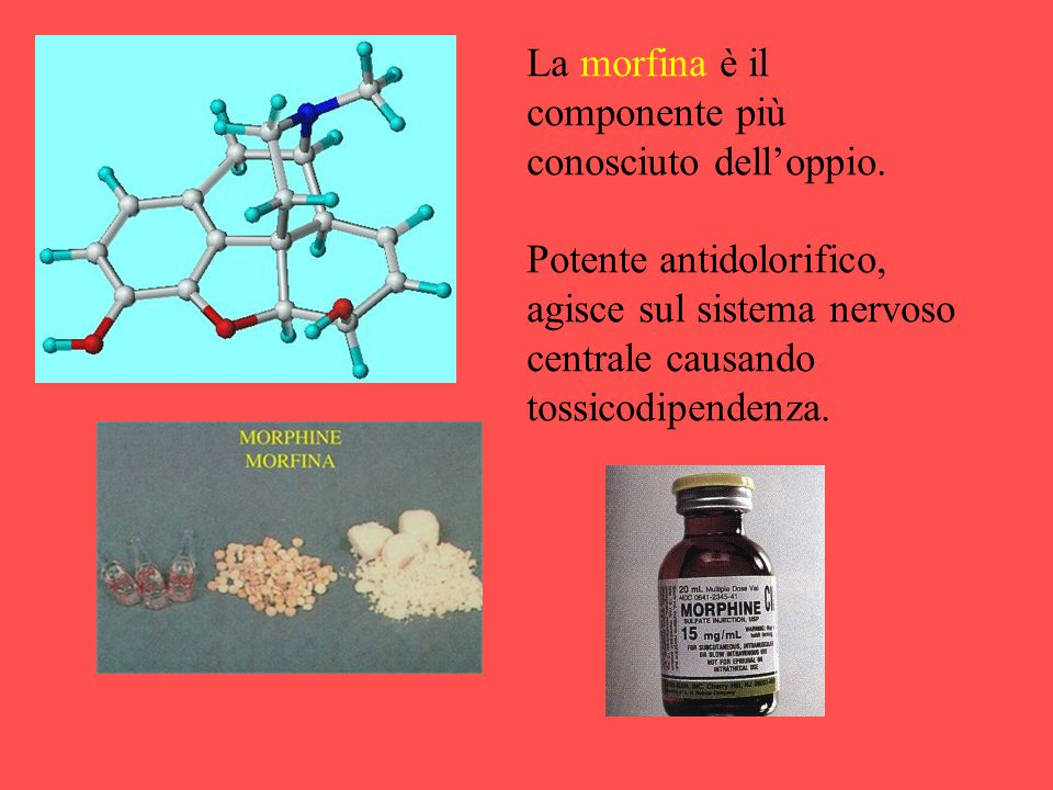La morfina è il componente più conosciuto dell'oppio.
