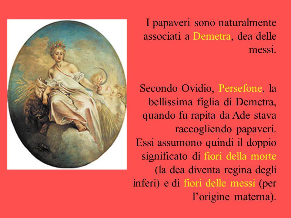 I papaveri sono naturalmente associati a Demetra, dea delle messi.