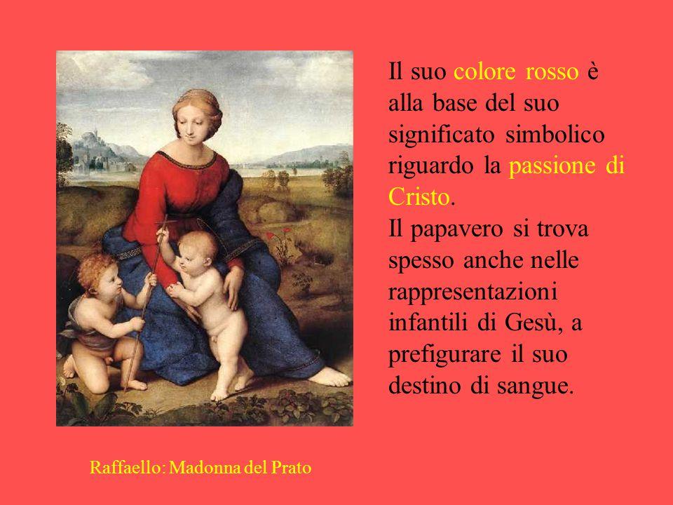 Raffaello: Madonna del Prato