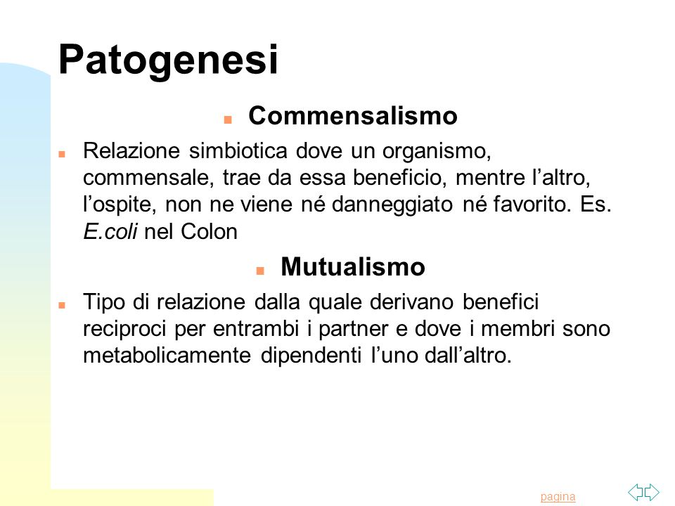 Patogenesi Commensalismo Mutualismo
